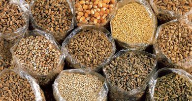 In forma per l'estate con la dieta dei cereali